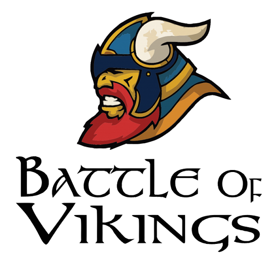 Battle of Vikings